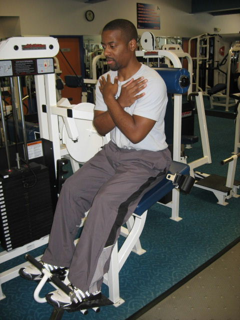 Back Exercise Machine Lower Strengthening Exercises