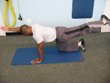 lower back strengthening exercises